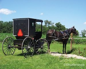 Amish County Wisconsin