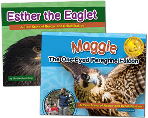 Esther the Eaglet and Maggie the One-Eyed Peregrine Falcon