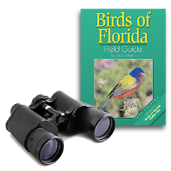 bird watching gear