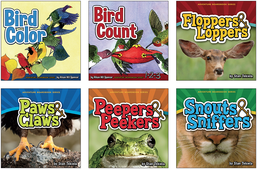 Adventure Board Book Series