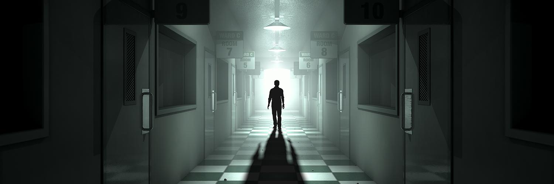 Feature Shadow in Asylum