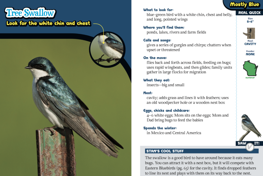 The Kids Guide To Birds Of Wisconsin Adventure Publications
