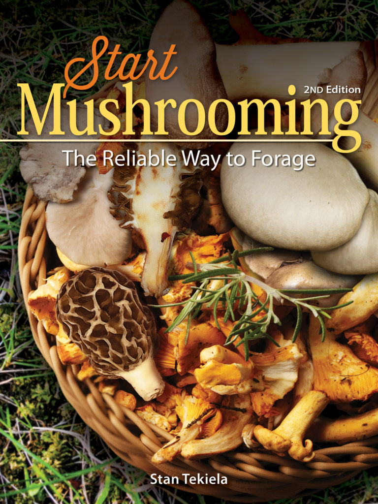 mushrooming
