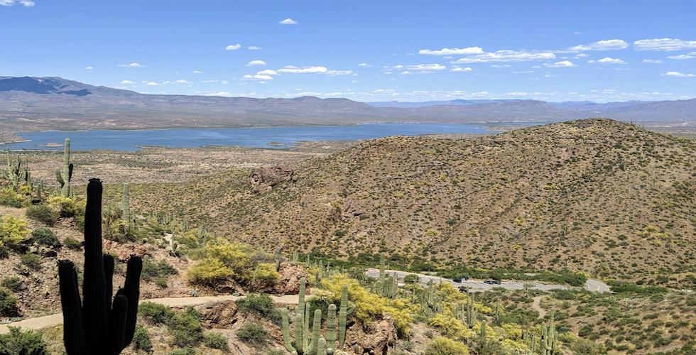 Arizona Banner