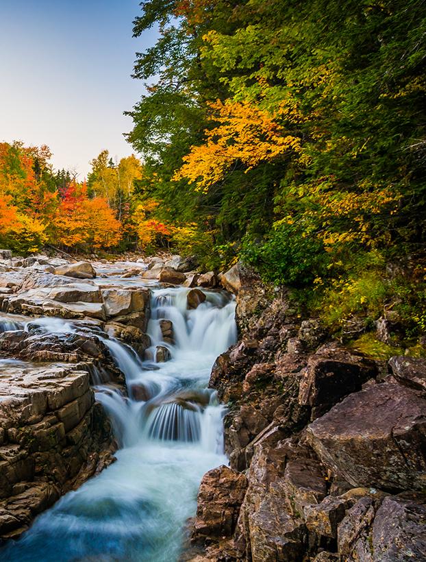Fall Day Trip