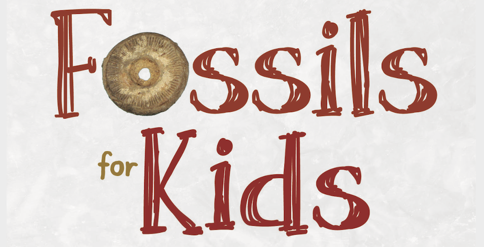 Fossils for Kids banner