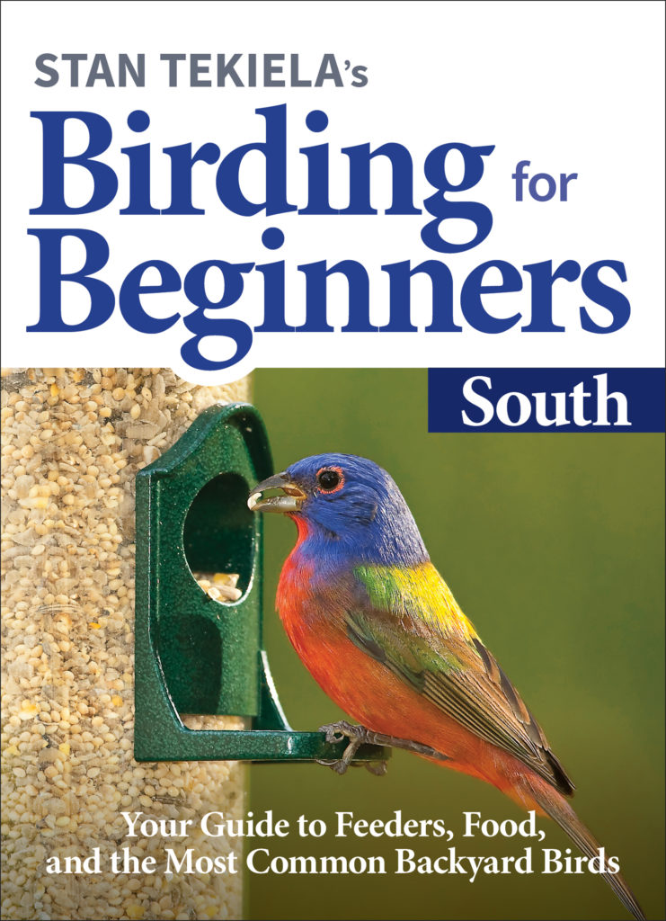 Birding for Beginners South