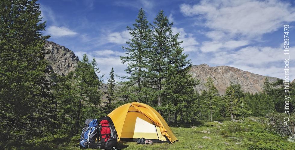Camping Basics Banner