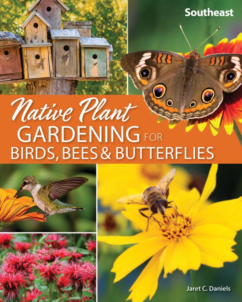 Birds Bees and Butterflies