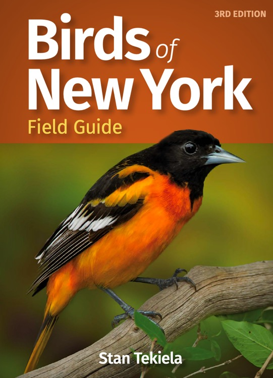 Birds of New York cover