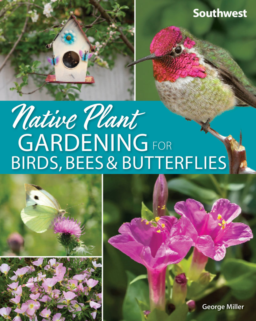Native Plant Gardening for Birds
