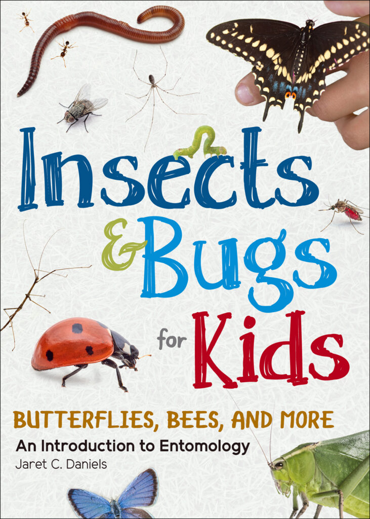 Insect & Bugs for Kids