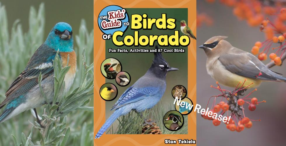 Kids Guide Birds of CO Banner