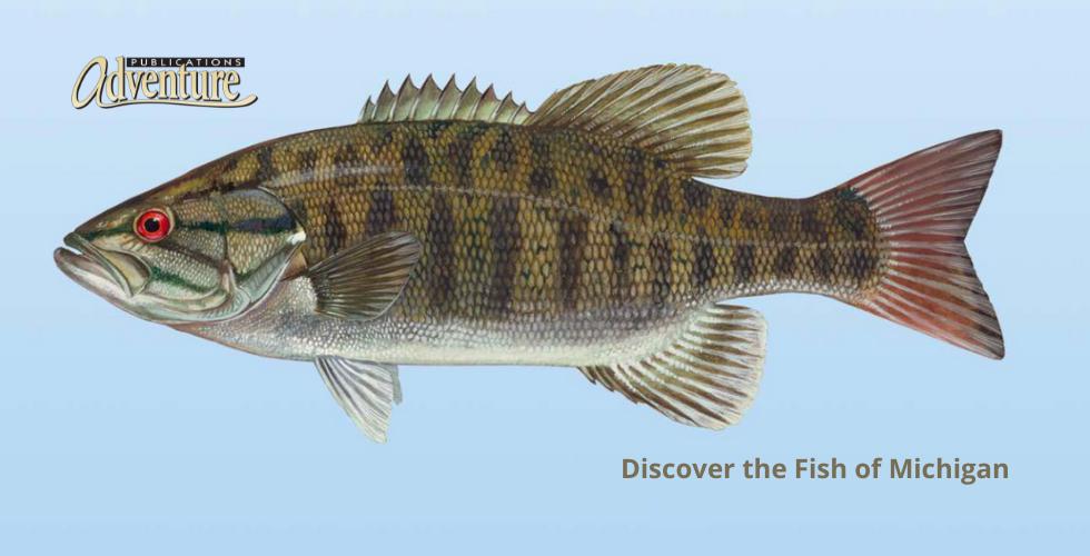 Fish of Michigan